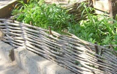 Простота плетения ивовых заграждений позволяет поднимать их на любую высоту, чтобы оградить цветник от набегов животных или детей