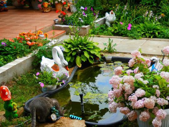 Как украсить садовый прудик