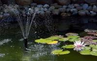 Выбираем стиль и оформление водоема в саду
