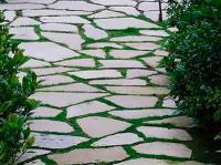 Укладка плитняка в садовые дорожки с швом из садовой травы.