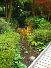 Как устроить ручей в саду? Алгоритм работ, фото