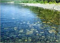 Анализ качества питьевой воды хлорирование, озонирование, фильтрация