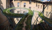 Прогулки за окном: подвесной мостик с настоящим газоном
