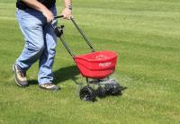 Советы и рекомендации по содержанию газона в весенний период