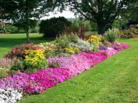 Устройство цветников придаст участку эффектный вид.