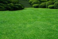 Делаем опрятный газон самостоятельно