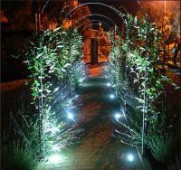 Как сделать интересное освещение сада