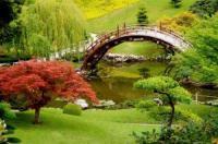 Озеленение участка по всем правилам ландшафтного дизайна